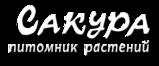 Питомник Сакура