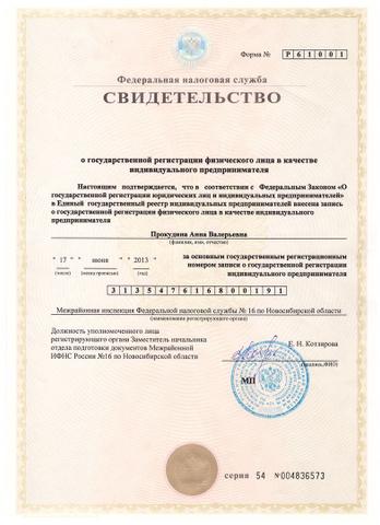 Регистрация то ип новосибирск ифнс проверить декларацию ндфл